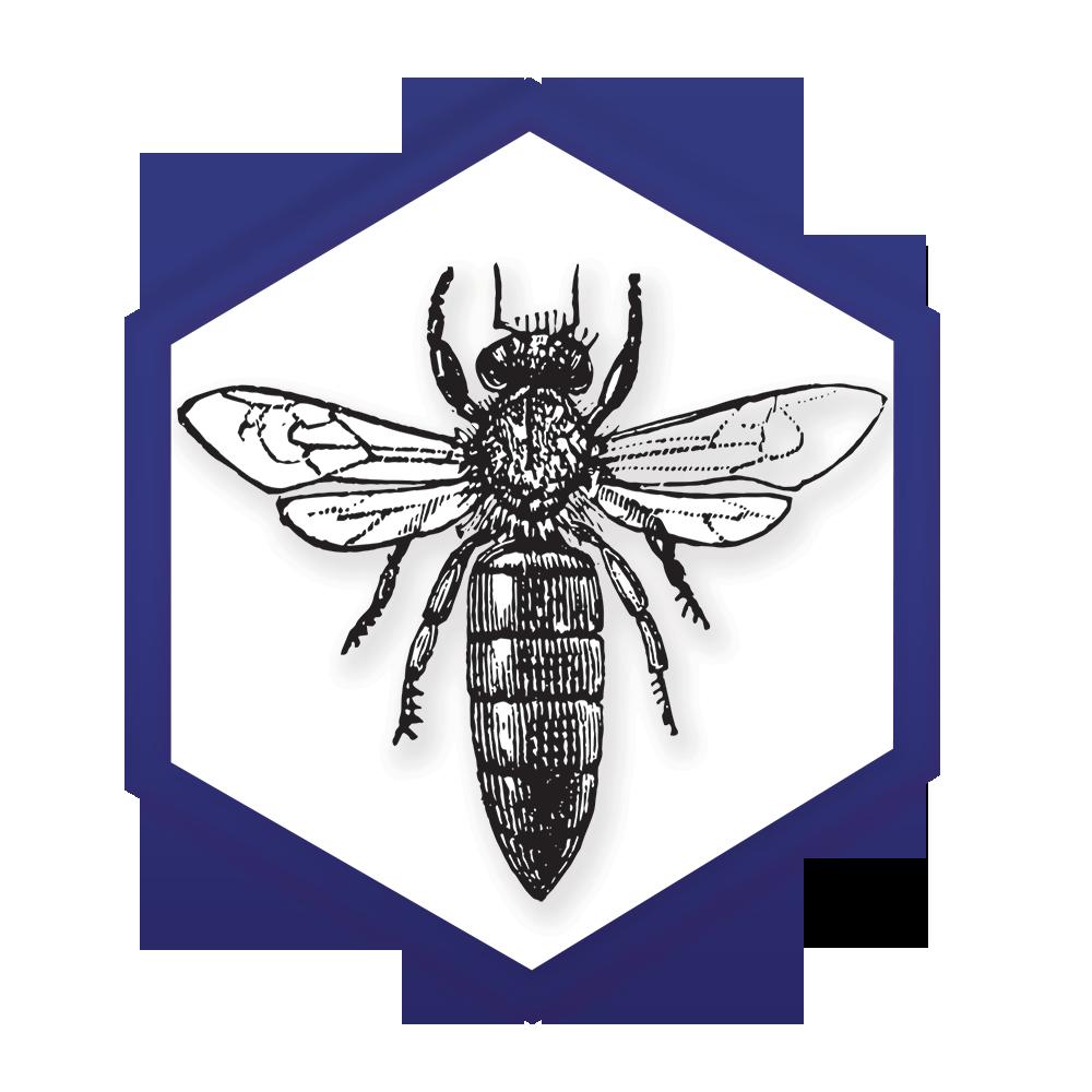 NY Bee Wellness Workshops logo