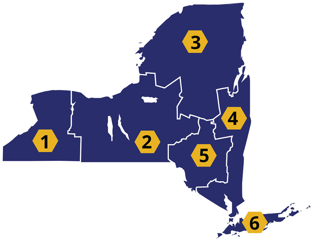 bee club regions of New York State